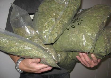 marihuana-640x450